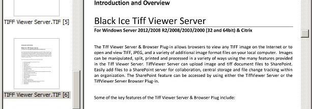 TIFF Viewer Server screenshot