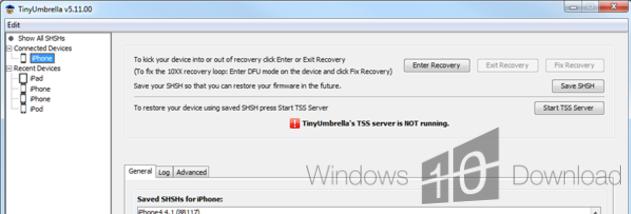 download tinyumbrella windows 10